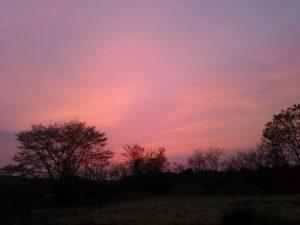 夜7時ころの丸光製麺/一関工場の西の空です。きれいな夕日が沈み、漆黒の闇が訪れる前の束の間の光景です。